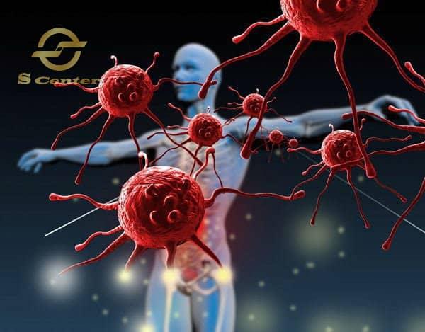 Hệ miễn dịch