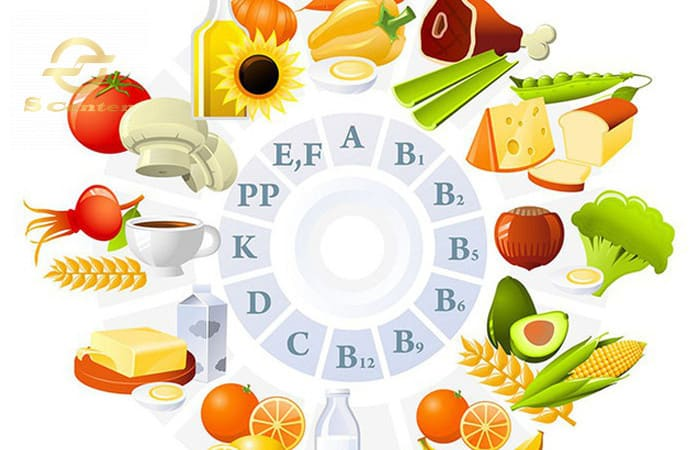 vitamin-la-gi-cac-loai-vitamin